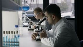 Cientistas novos que estudam a substância no microscópio vídeos de arquivo