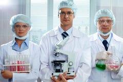 Cientistas sérios Imagem de Stock