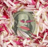Cientos billetes de banco del dólar Imagen de archivo