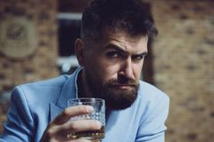 Cientos zloty polacos en un vidrio Alcohol de consumición del hombre barbudo Concepto del whisky, del brandy o del coñac Hombre t fotos de archivo libres de regalías