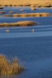 Ciepła łuna zmierzch na bagnie przy Milford punktem, Connecticut Obrazy Royalty Free