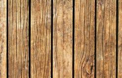 Ciepła drewniana tekstura z pionowo liniami Żółtego brązu drewniany tło dla naturalnego sztandaru Fotografia Royalty Free