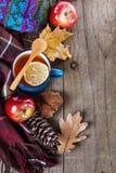 Ciepła odzieży i cytryny herbata nad nieociosanym drewnianym tłem Zdjęcia Royalty Free