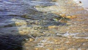 Ciepłego zmierzchu zwrotnika potężny morze macha na plaży Skalista dna i jasnego woda zbiory wideo
