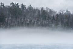 Ciepły powietrze, zimno warstwy, bladego nabrzeża Ontario deciduous Wschodni las obraz stock