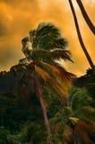Ciepły tropikalny popołudnie Zdjęcia Royalty Free