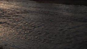 Ciepły zmierzch przy rzeką przed kasztelem - wiosny wody bieg puszek zdjęcie wideo