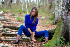 ciepły drewno Fotografia Royalty Free