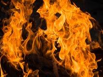 Ciepły ognisko w zimnej nocy Zdjęcie Royalty Free