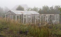 Cieplarnia w mgle w ranku fotografia stock