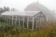 Cieplarnia w mgle w ranku fotografia royalty free