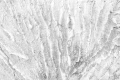 Cierniowa betonowej ściany tekstura Obraz Royalty Free
