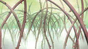 Cierniowy flory bagno ilustracji