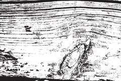 Cierpienia drewna tekstura Obraz Stock