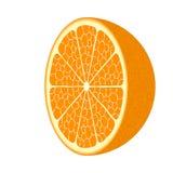 Cierre anaranjado maduro de la fruta para arriba Fotografía de archivo