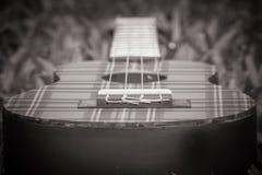 Cierre blanco y negro abstracto de la imagen para arriba de la guitarra del ukelele del instrumento musical en hierba verde Fotografía de archivo libre de regalías