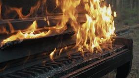 Cierre a cámara lenta encima de las altas llamas que queman el piano y el árbol en bosque metrajes