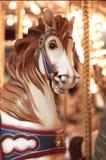 Cierre circular del carrusel del caballo para arriba Imágenes de archivo libres de regalías