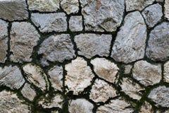 Cierre cubierto de musgo de la textura de la pared de piedra para arriba en el parque imagen de archivo libre de regalías