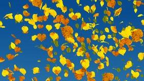 Cierre de la cámara lenta de las hojas de otoño para arriba almacen de video
