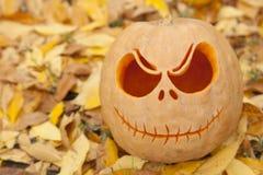 Cierre de la calabaza de Halloween para arriba en las hojas de oro fotografía de archivo libre de regalías