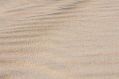 Cierre de la duna de arena para arriba Foto de archivo libre de regalías