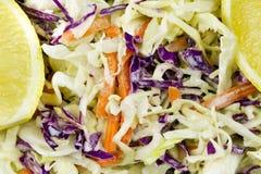 Cierre de la ensalada de la ensalada de col para arriba Fotos de archivo libres de regalías
