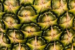 Cierre de la fruta de la piña para arriba Fotografía de archivo