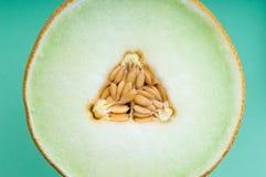 Cierre de la fruta fresca para arriba de la rebanada de restauración del melón Fotografía de archivo libre de regalías