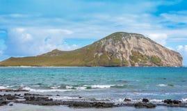 Cierre de la isla del conejo para arriba Imagen de archivo