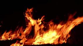 Cierre de la llama del fuego para arriba almacen de metraje de vídeo