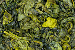 Cierre de la menta del té verde para arriba Imagen de archivo libre de regalías