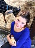 Cierre de la muchacha del adolescente encima de la foto en puddock del parque zoológico con las cabras Foto de archivo libre de regalías
