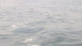Cierre de la onda del mar para arriba, opinión de ángulo bajo, idea del viaje metrajes