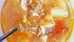 Cierre de la sopa de pollo para arriba Foto de archivo