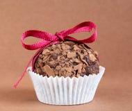 Cierre de la trufa de chocolate para arriba Fotografía de archivo