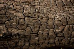 Cierre de madera del fondo de la textura encima de 9 Foto de archivo