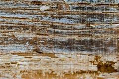 Cierre de madera envejecido del contexto para arriba imagenes de archivo
