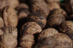 Cierre de Wallnuts para arriba Imagenes de archivo