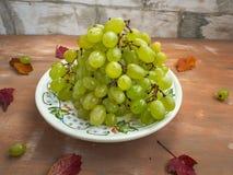 Cierre decorativo blanco de la placa de las uvas blancas para arriba imagen de archivo libre de regalías