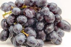 Cierre del azul de las uvas para arriba Imagenes de archivo