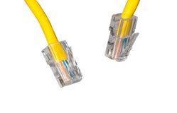 Cierre del cable de Lan para arriba Fotografía de archivo