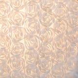 Cierre del fondo de las rosas blancas para arriba fotos de archivo