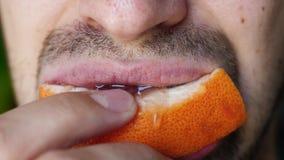 Cierre del hombre sin afeitar que arranca con los dientes y que mastica la rebanada de pomelo Boca masculina que mastica el pomel almacen de metraje de vídeo