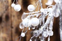 Cierre del muérdago de la Navidad para arriba en fondo marrón foto de archivo libre de regalías