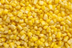 Cierre del núcleo de maíz para arriba imagenes de archivo