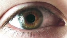 Cierre del ojo del iris del hombre para arriba almacen de video