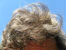 Cierre del pelo del hombre para arriba Fotografía de archivo libre de regalías