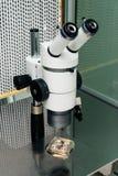 Cierre del proceso de la fertilización in vitro para arriba Equipo en el laboratorio de la fertilización, IVF Imagen de archivo libre de regalías
