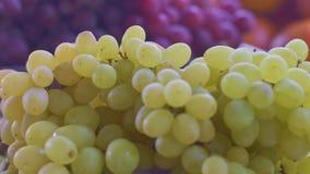 Cierre dinámico para arriba de las uvas blancas y rojas en un mercado local de los granjeros con la cámara móvil almacen de video